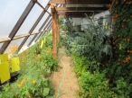 May 2015 Greenhouse
